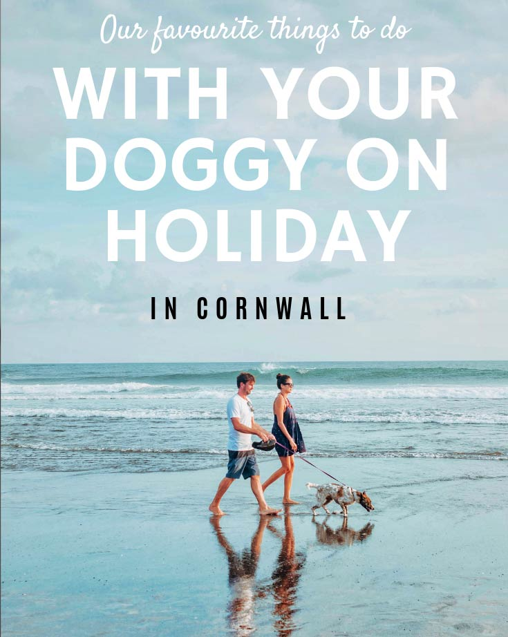 Our-favourite-things-to-do-in-cornwall-with-your-doggy